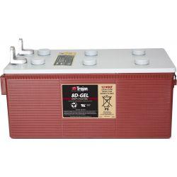 Batterie TROJAN 8D-GEL
