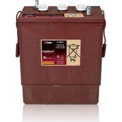 Batterie Trojan J305HG-AC